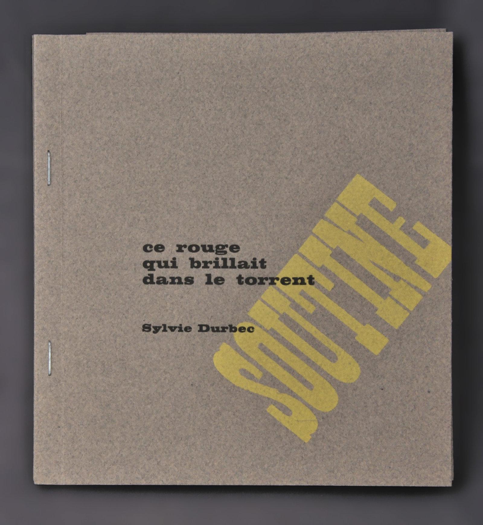 Ce rouge qui brillait dans le torrent | Durbec, Sylvie (1952-....). Auteur