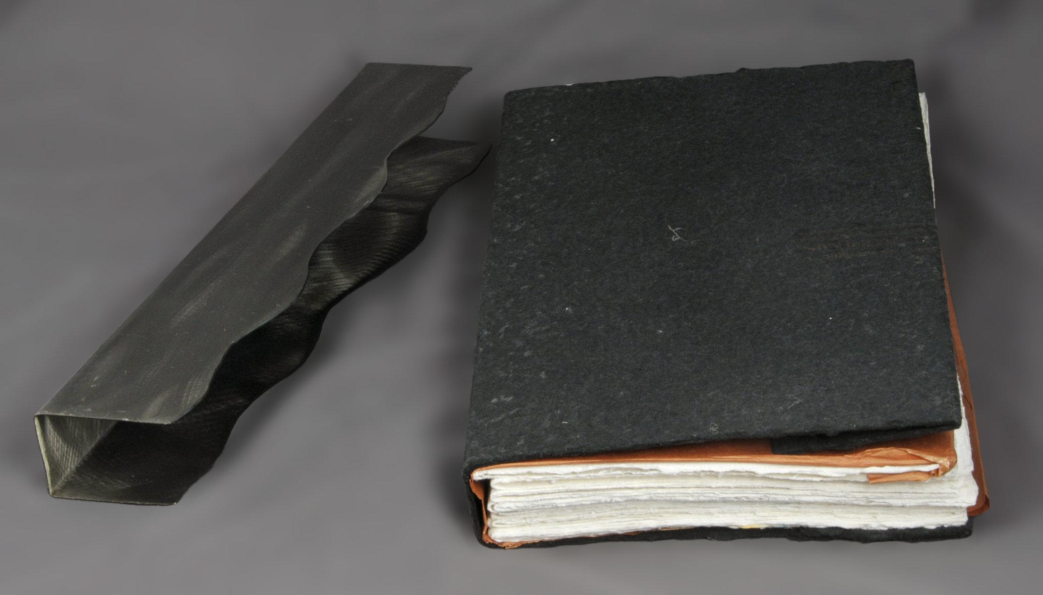 Notes, pensées et aphorisme | Nidzgorski, Adam (1933-...). Auteur