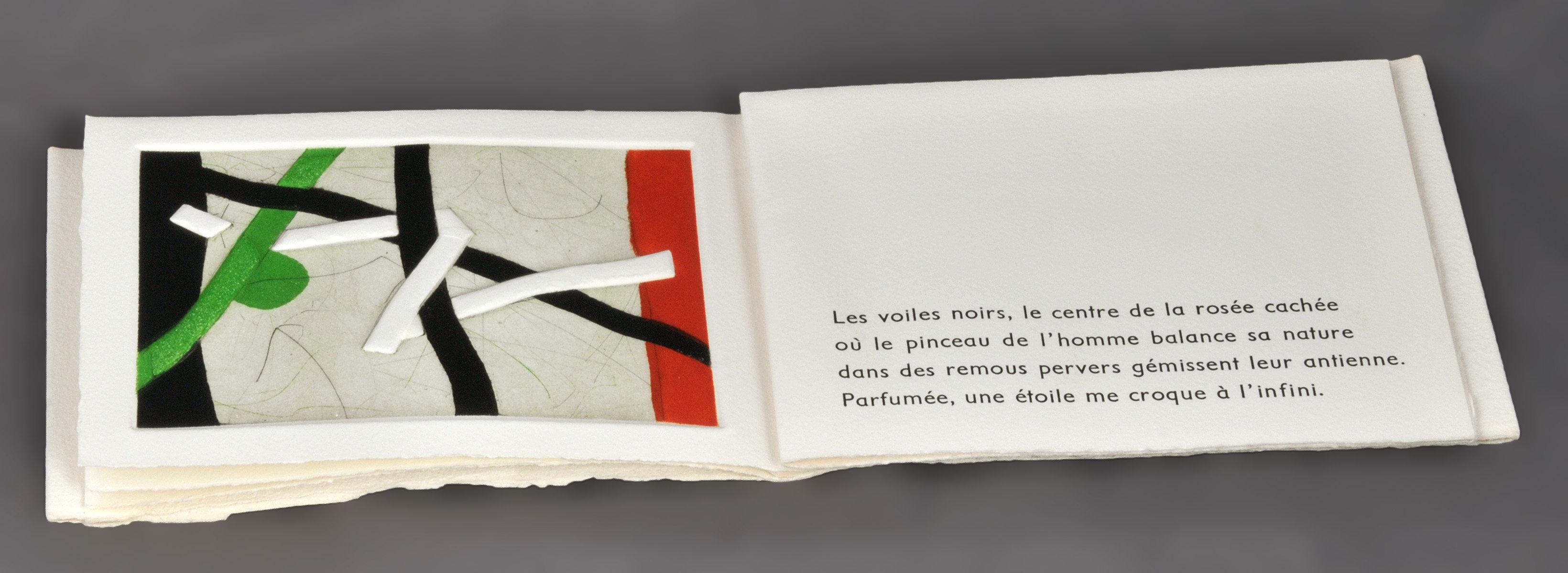 Voyage est le feu (Le) | Arrabal, Fernando (1932-....). Auteur