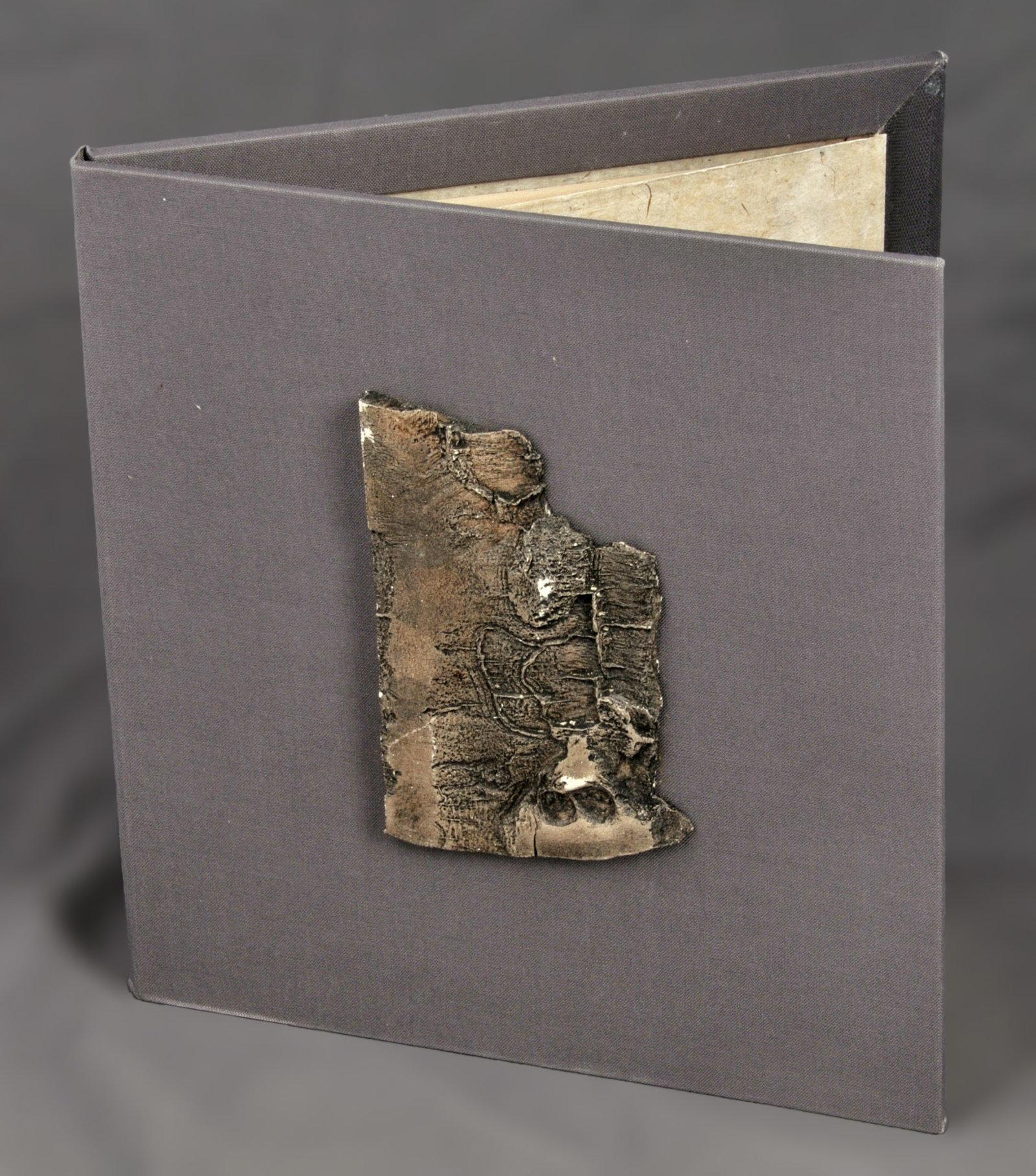Poiriers d'hiver | Arseguel, Gérard (1938-....). Auteur