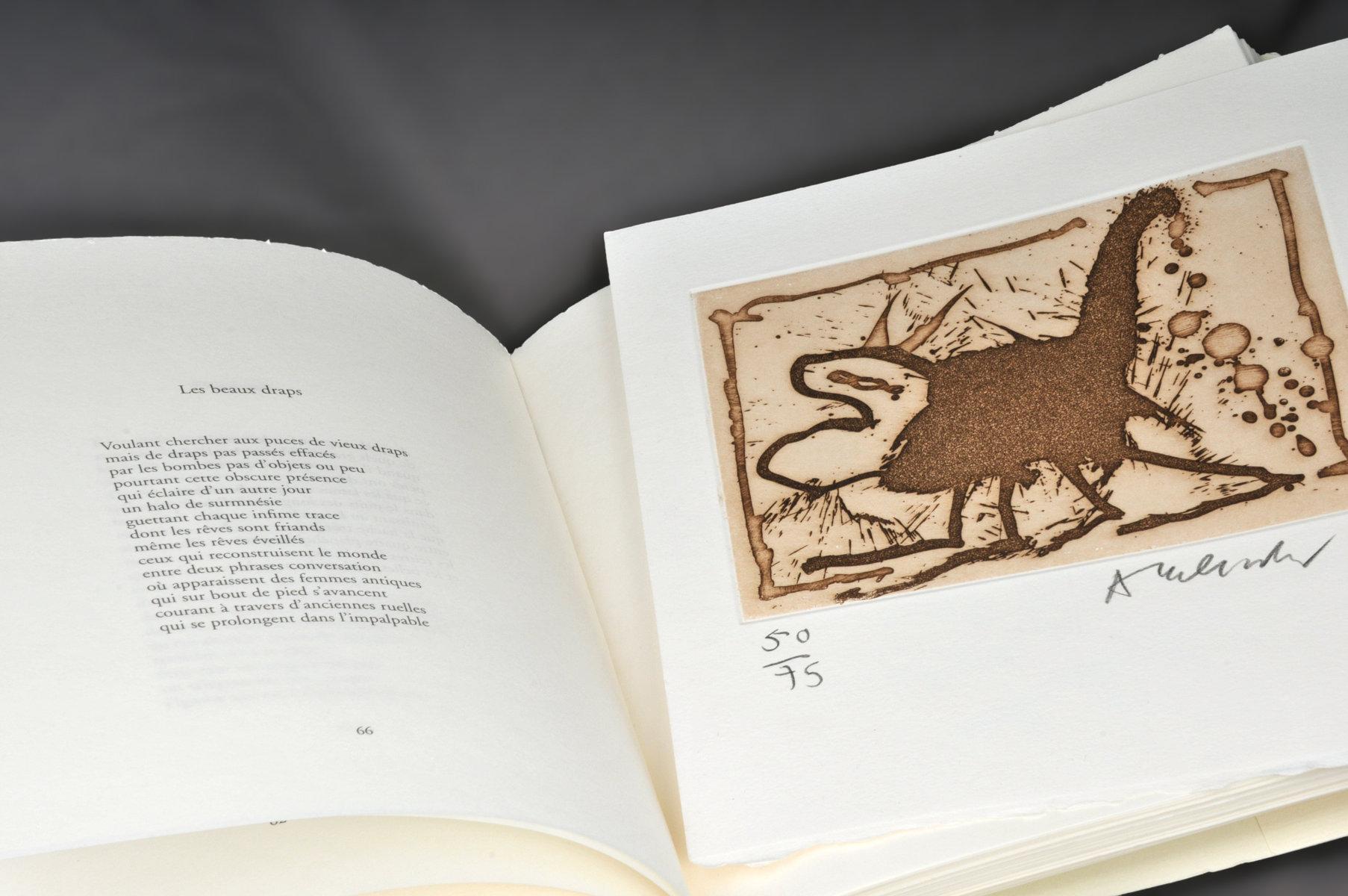 Archèmes | Sicard, Michel (1950-....). Auteur