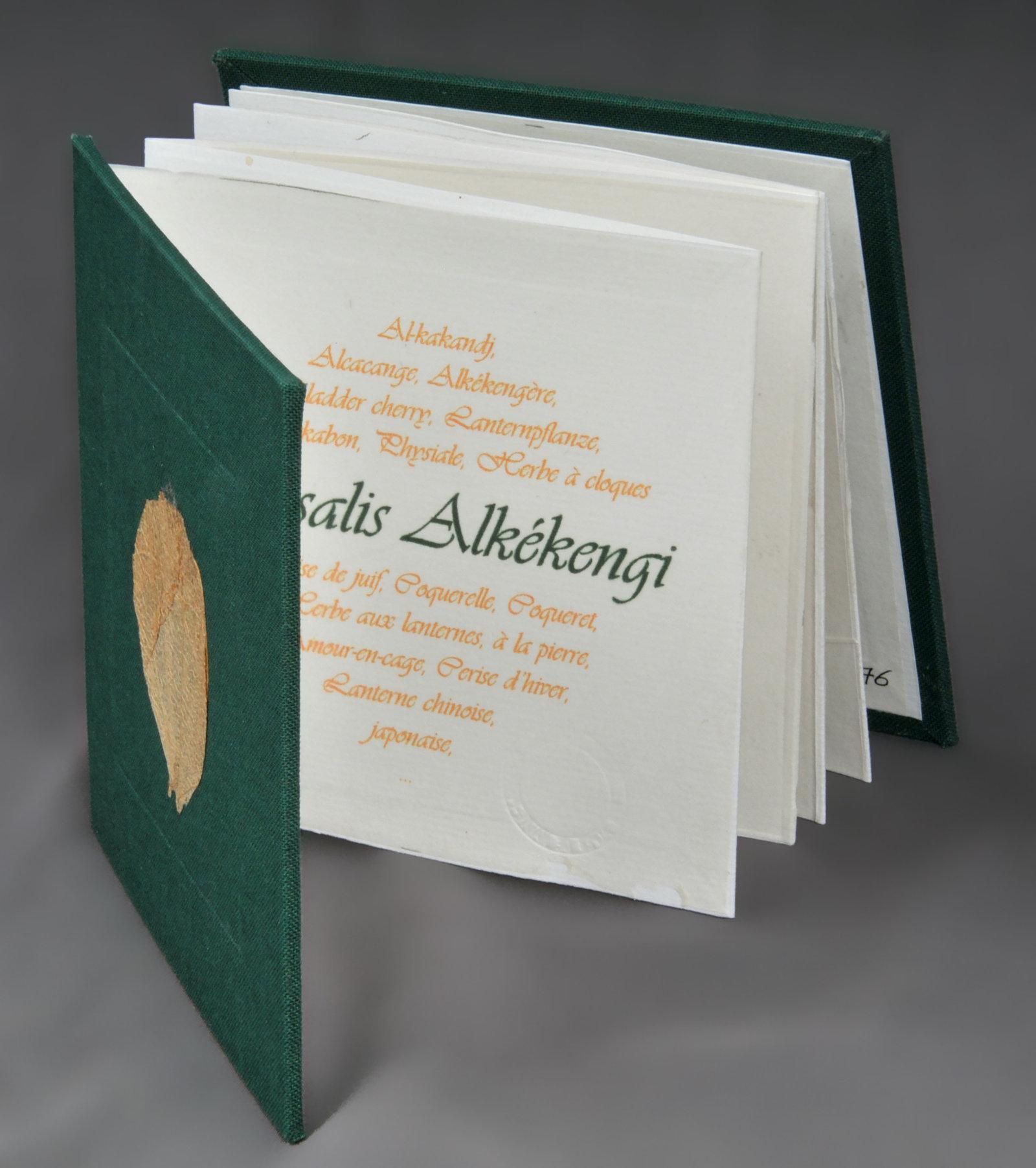 Physalis Alkékengi | Zéolzer, Anna. Auteur