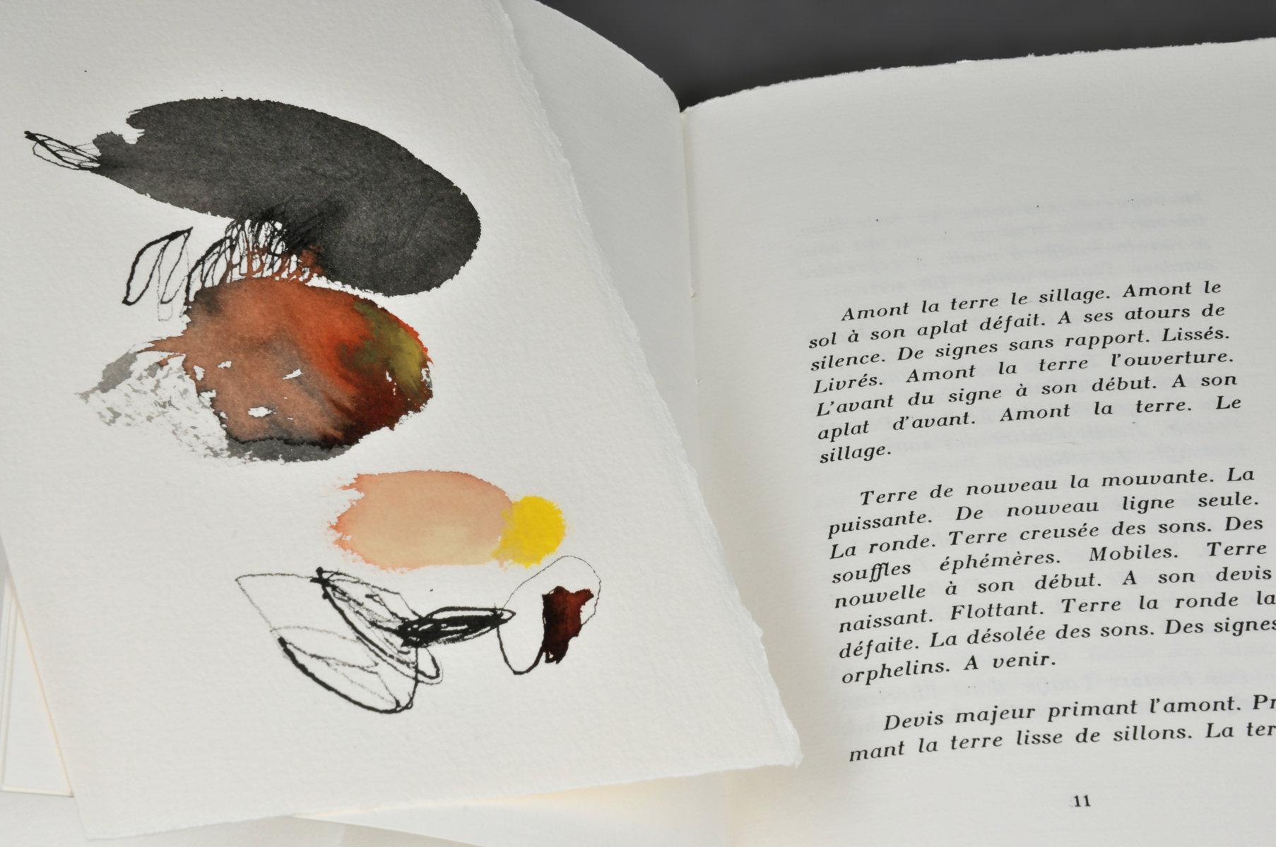Terre à monde | Hautchamp, Mikaël (1975 - ....). Auteur